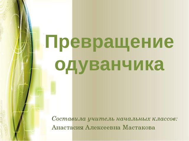 Превращение одуванчика Составила учитель начальных классов: Анастасия Алексее...