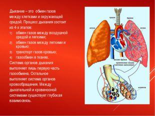 Дыхание – это обмен газов между клетками и окружающей средой. Процесс дыхания