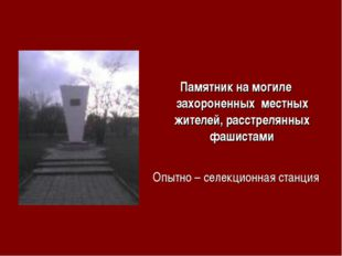 Памятник на могиле захороненных местных жителей, расстрелянных фашистами Опыт