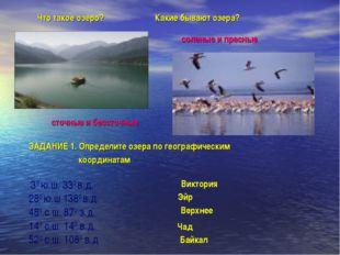 Какие бывают озера? соленые и пресные Что такое озеро? сточные и бессточные З