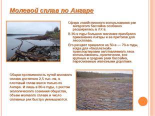 Молевой сплав по Ангаре Сфера хозяйственного использования рек ангарского бас