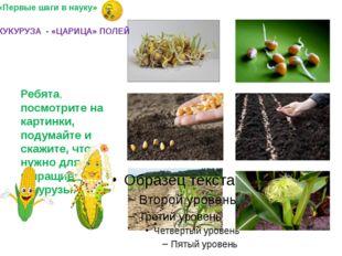Ребята, посмотрите на картинки, подумайте и скажите, что нужно для выращиван