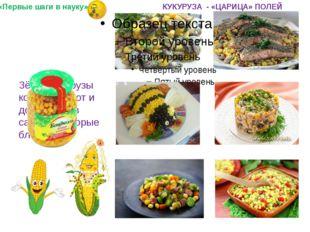 Зёрна кукурузы консервируют и добавляют в салаты и вторые блюда. «Первые шаг