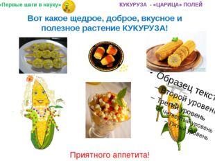 Вот какое щедрое, доброе, вкусное и полезное растение КУКУРУЗА! Приятного апп