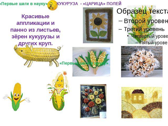 Красивые аппликации и панно из листьев, зёрен кукурузы и других круп. «Первые...