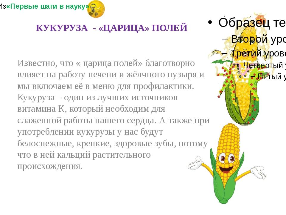 Известно, что « царица полей» благотворно влияет на работу печени и жёлчного...