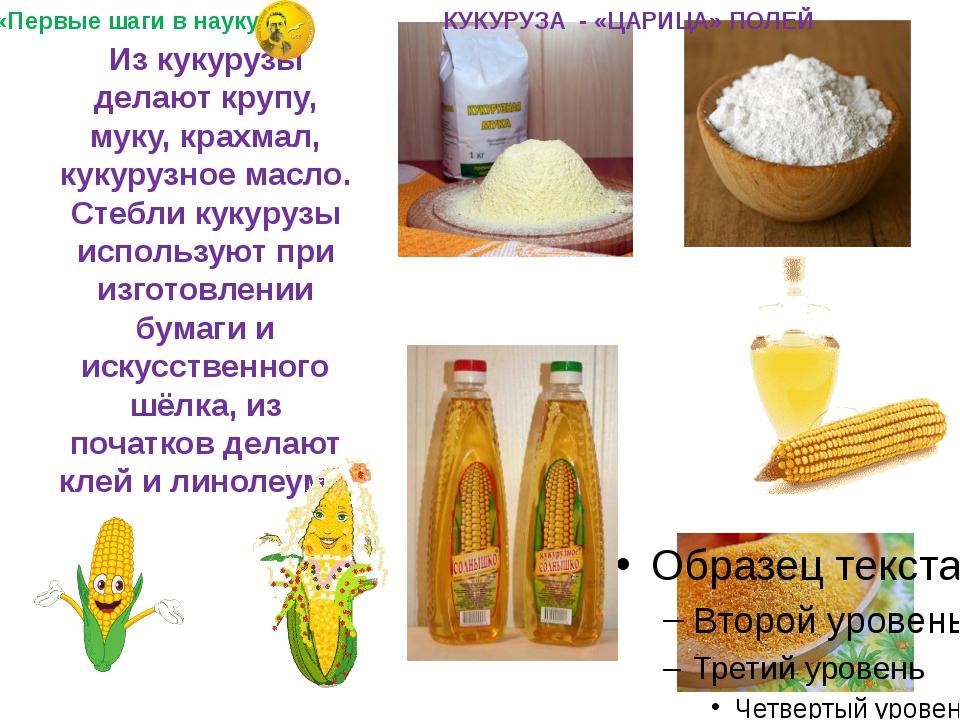 Из кукурузы делают крупу, муку, крахмал, кукурузное масло. Стебли кукурузы и...
