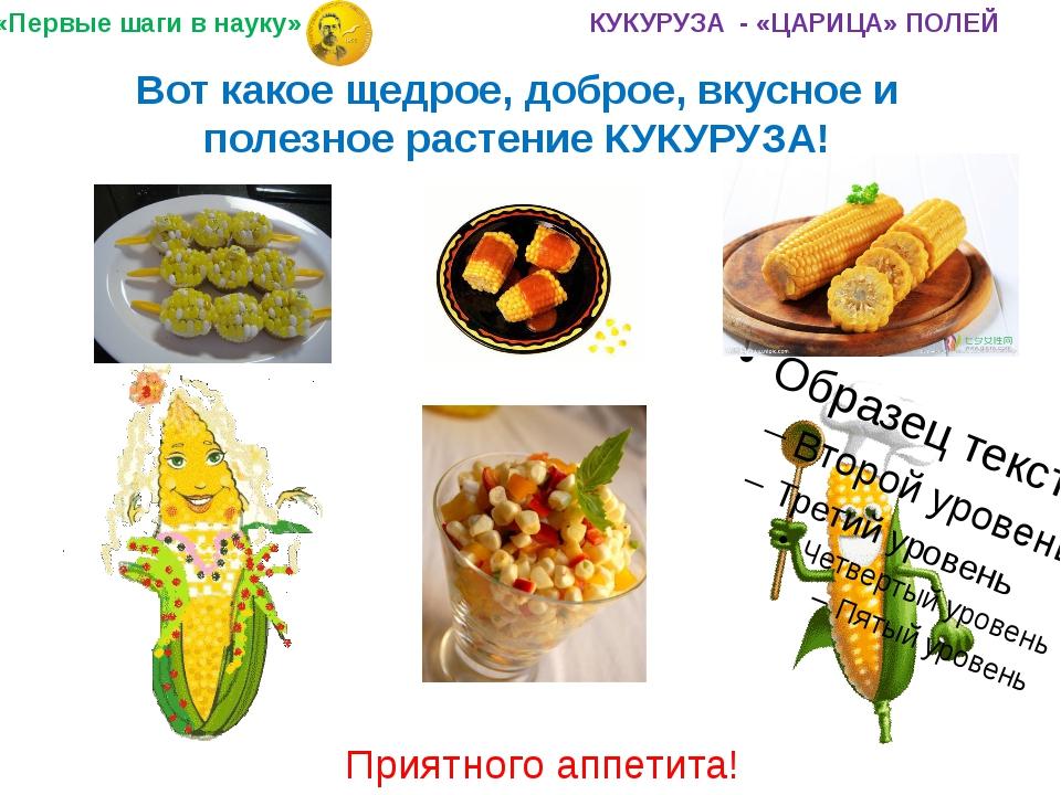 Вот какое щедрое, доброе, вкусное и полезное растение КУКУРУЗА! Приятного апп...