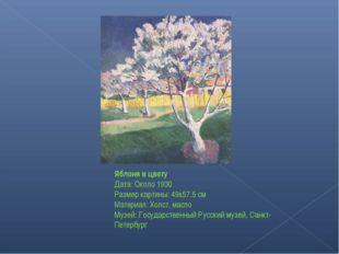 Яблоня в цвету Дата: Около 1930 Размер картины: 49x57.5 см Материал: Холст, м