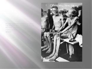 В Освенциме бесчеловечные опыты над людьми проводил доктор Йозеф Менгеле, сч
