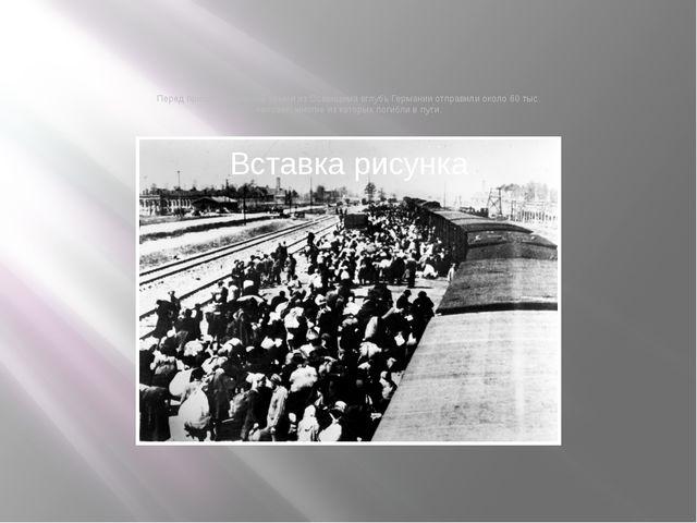 Перед приходом Красной армии из Освенцима вглубь Германии отправили около 60...