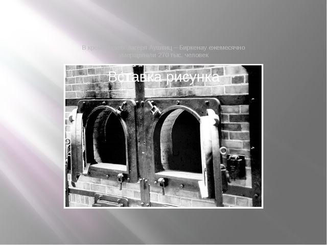 В крематориях лагеря Аушвиц – Биркенау ежемесячно умерщвляли 270 тыс. человек