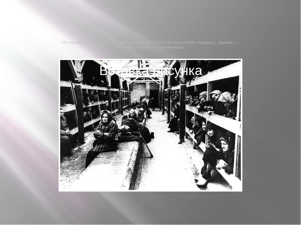 На территории комплекса лагерей на самом деле было три концлагеря – Аушвиц 1,...