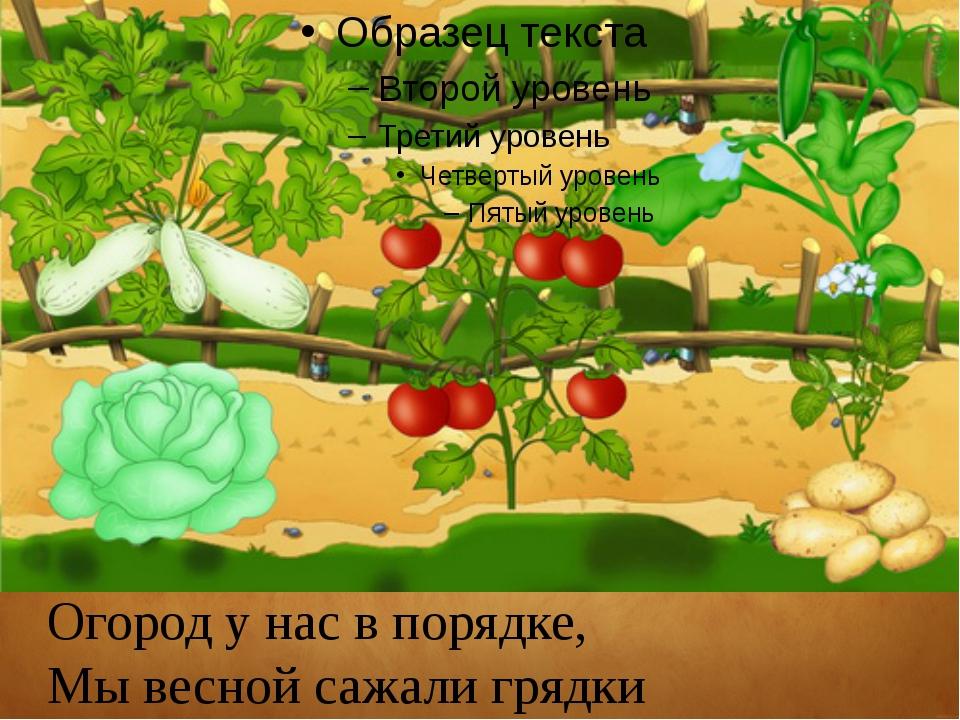 Огород у нас в порядке, Мы весной сажали грядки