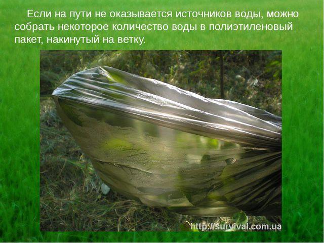Если на пути не оказывается источников воды, можно собрать некоторое количес...