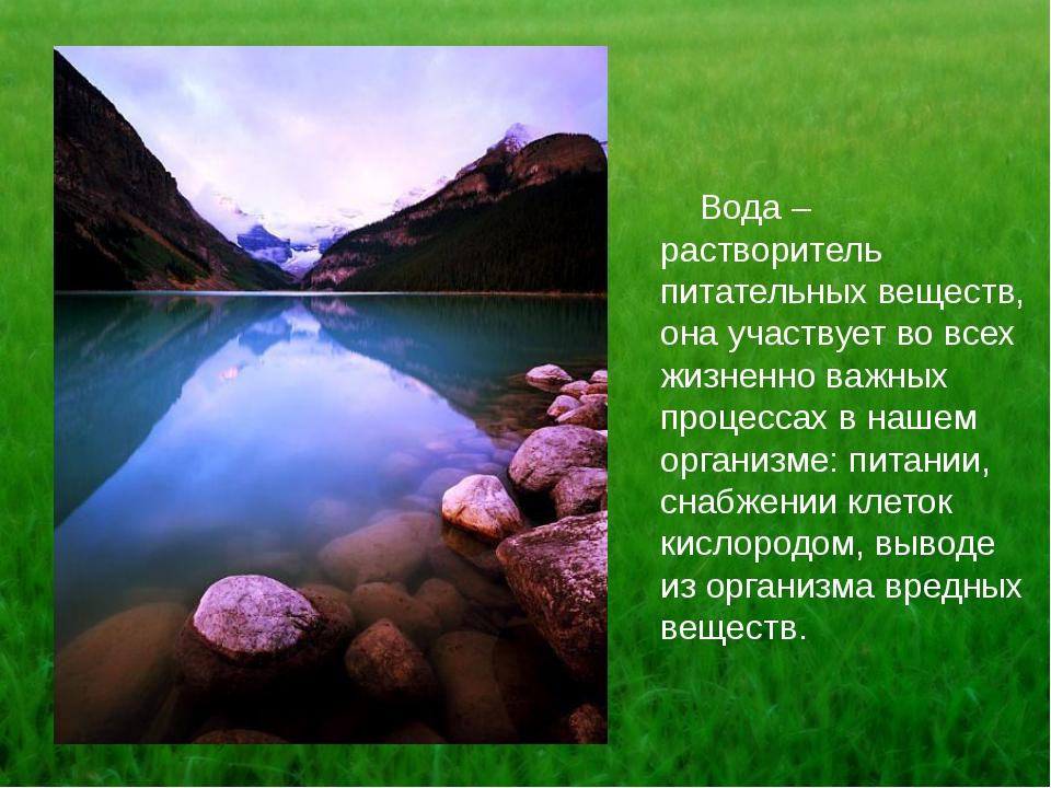 Вода – растворитель питательных веществ, она участвует во всех жизненно важн...