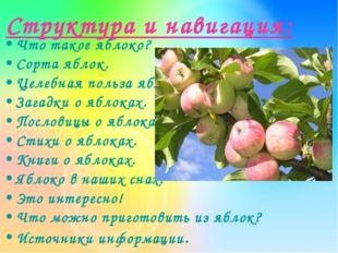 Структура и навигация: Что такое яблоко? Сорта яблок. Целебная польза яблок.