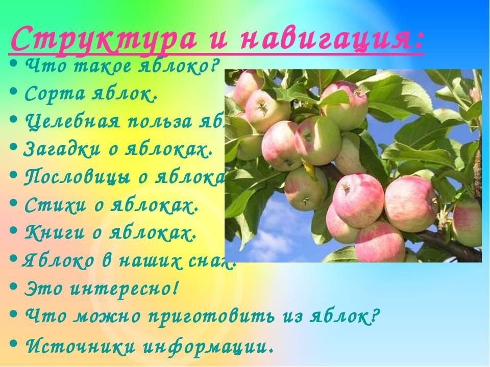 Структура и навигация: Что такое яблоко? Сорта яблок. Целебная польза яблок....