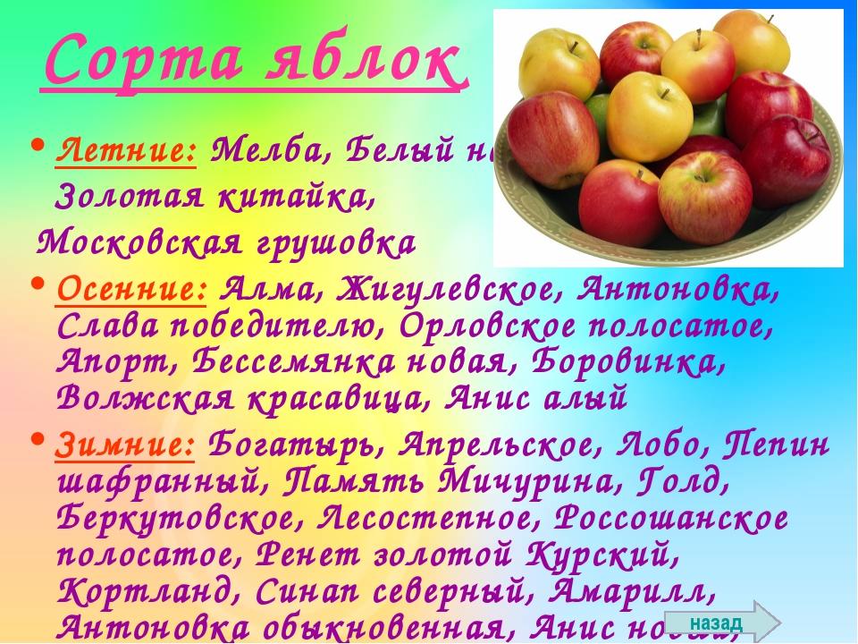 Сорта яблок Летние: Мелба, Белый налив, Золотая китайка, Московская грушовка...