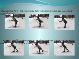 Упражнение № 3 : попеременная работа палками взявшись за середину лыжной пал