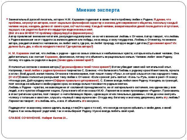 Мнение эксперта Замечательный русский писатель, историк Н.М. Карамзин поднима...