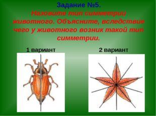 Задание №5. Назовите тип симметрии животного. Объясните, вследствие чего у жи