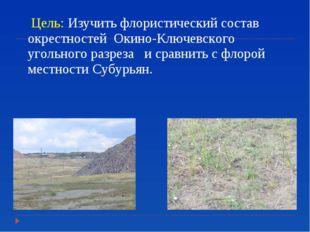 Цель: Изучить флористический состав окрестностей Окино-Ключевского угольного