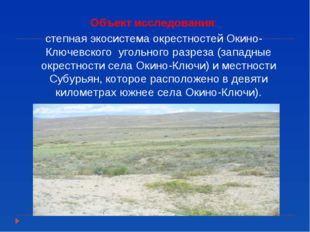 Объект исследования: степная экосистема окрестностей Окино-Ключевского угольн