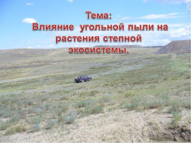 Тема: Влияние угольной пыли на степные экосистемы Восточных окрестностей г. К...