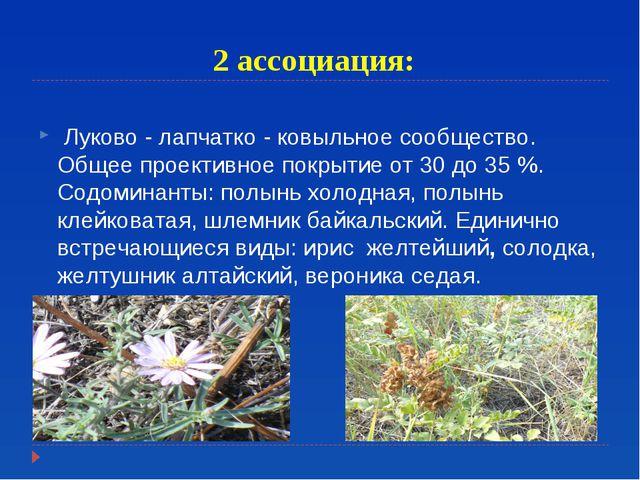 2 ассоциация: Луково - лапчатко - ковыльное сообщество. Общее проективное пок...