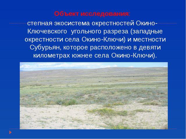 Объект исследования: степная экосистема окрестностей Окино-Ключевского угольн...