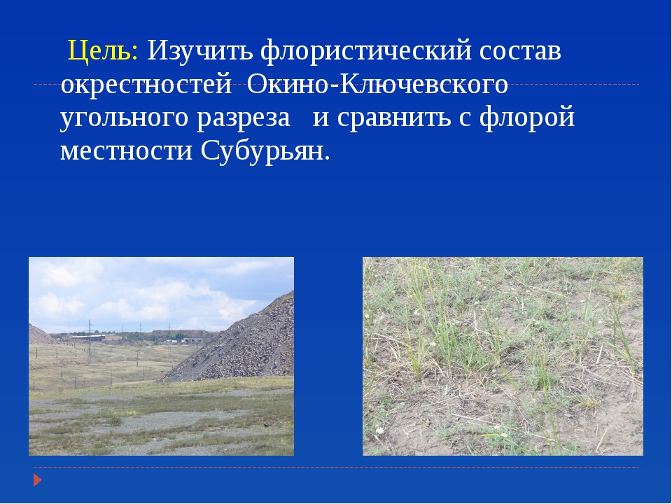 Цель: Изучить флористический состав окрестностей Окино-Ключевского угольного...