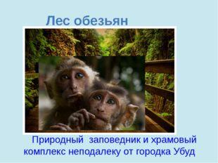 Лес обезьян Природный заповедник ихрамовый комплекс неподалеку отгородка Уб