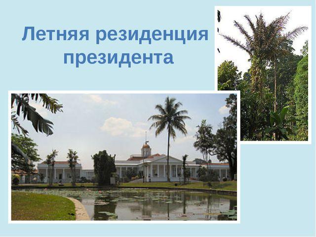 Летняя резиденция президента