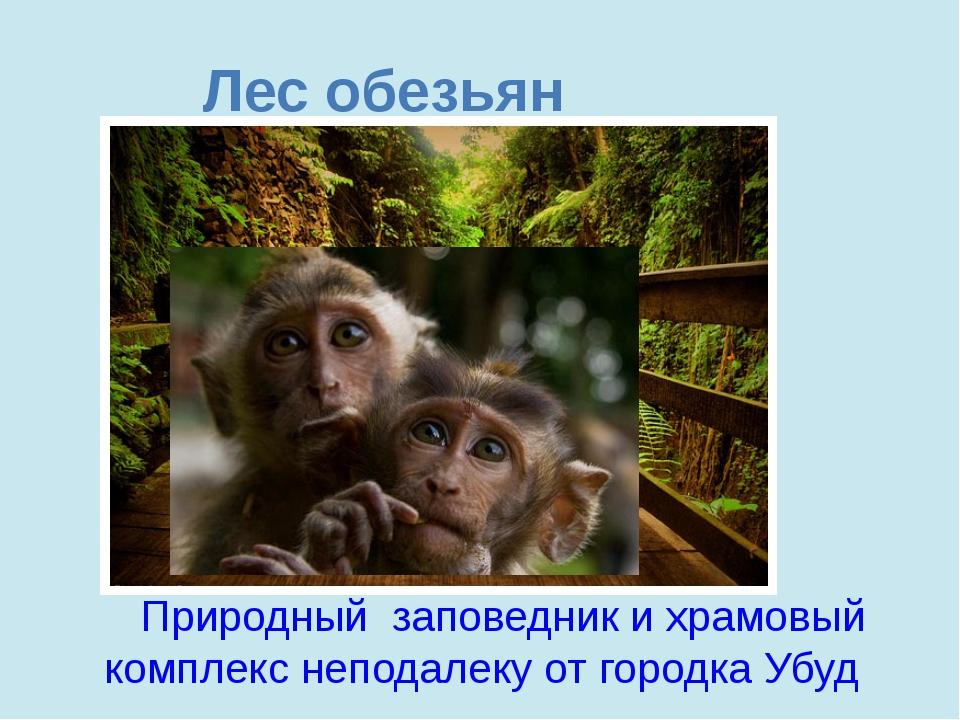 Лес обезьян Природный заповедник ихрамовый комплекс неподалеку отгородка Уб...