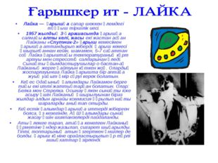 Лайка — ғарышқа сапар шеккен әлемдегі тұңғыш тіршілік иесі. 1957 жылдың 3-қар
