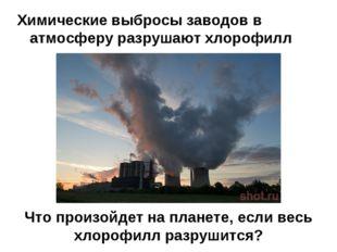 Что произойдет на планете, если весь хлорофилл разрушится? Химические выбросы