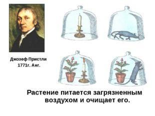 Джозеф Пристли 1771г. Анг. Растение питается загрязненным воздухом и очищает