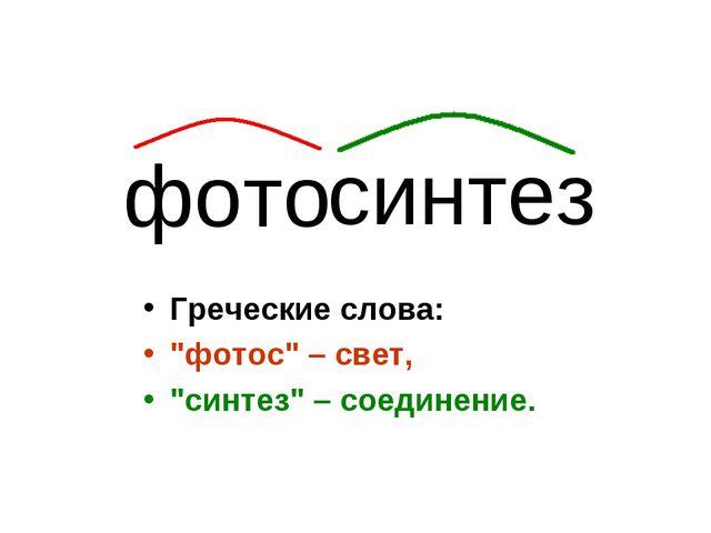 "Греческие слова: ""фотос"" – свет, ""синтез"" – соединение. фото синтез"
