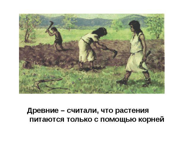Древние – считали, что растения питаются только с помощью корней
