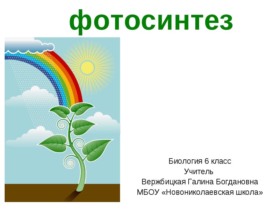 Реферат на тему фазы фотосинтеза 1615