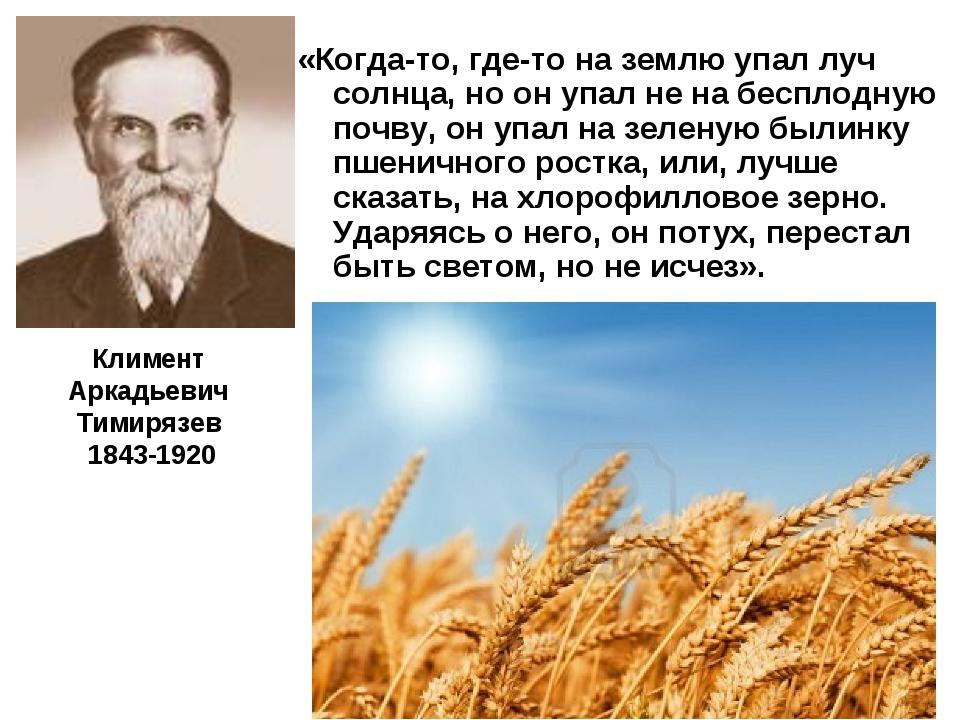«Когда-то, где-то на землю упал луч солнца, но он упал не на бесплодную почв...