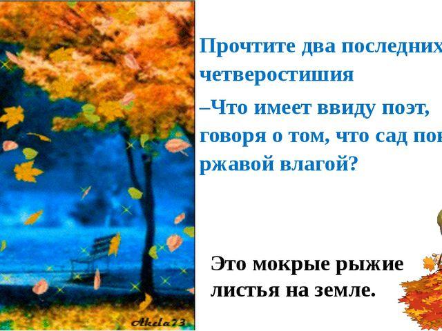 Прочтите два последних четверостишия –Что имеет ввиду поэт, говоря о том, что...