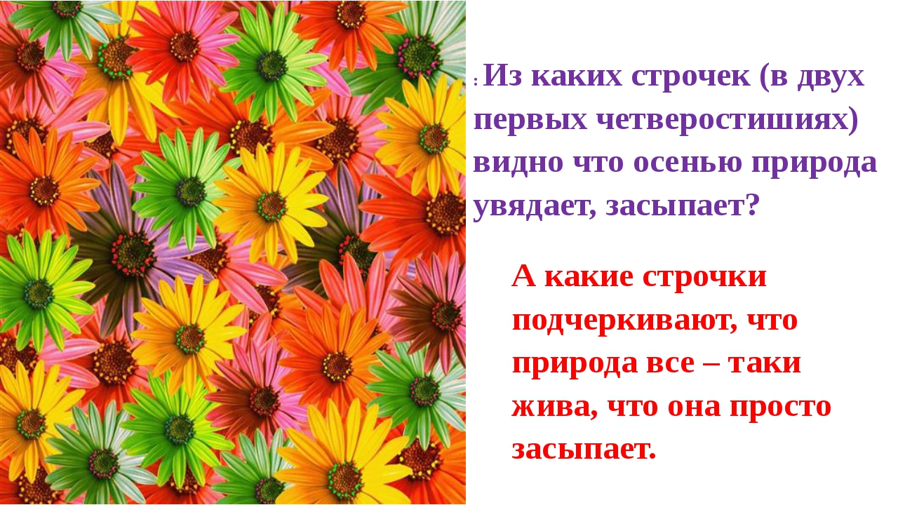 : Из каких строчек (в двух первых четверостишиях) видно что осенью природа ув...