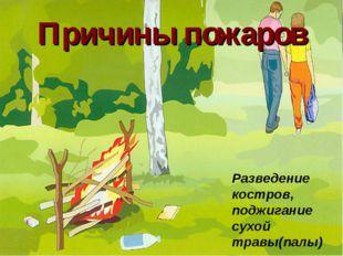Причины пожаров Разведение костров, поджигание сухой травы(палы)