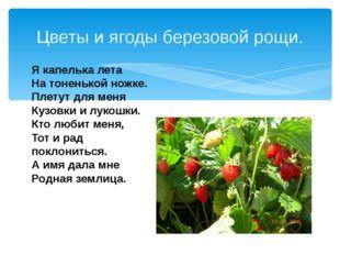 Цветы и ягоды березовой рощи. Я капелька лета На тоненькой ножке. Плетут для