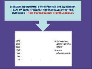 В рамках Программы в технических объединениях ГБОУ РХ ДОД «РЦДОД» проведена