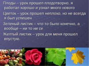 Плоды – урок прошел плодотворно, я работал хорошо и узнал много нового Цвето