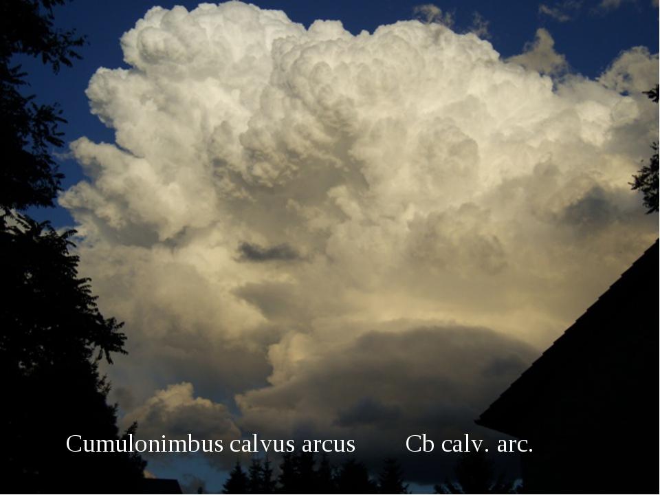 Cumulonimbus calvus arcusCb calv. arc.