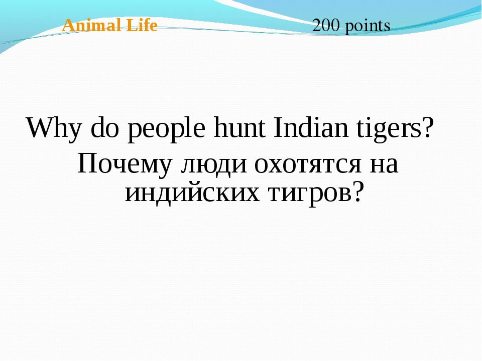 Animal Life 200 points Why do people hunt Indian tigers? Почему люди охотятс...